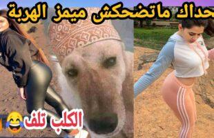 MOROCCAN MEMES (ميمز مغربي)شمس العشية